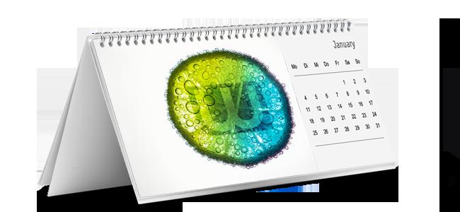 wavamedia - tischkalender-drucken-in-raxendorf