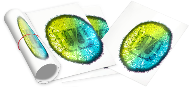 wavamedia - grossflaechenplakate-drucken-niederoesterreich