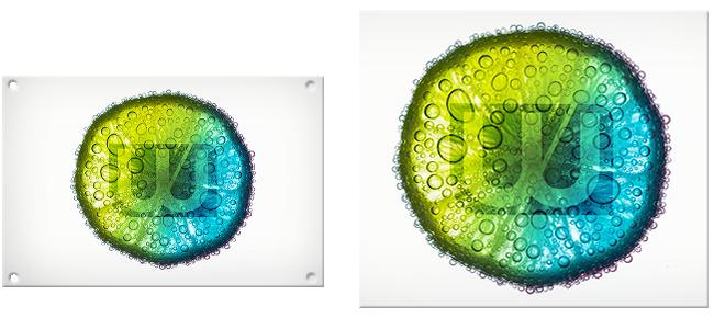 wavamedia - saugnapfschilder-drucken-niederoesterreich